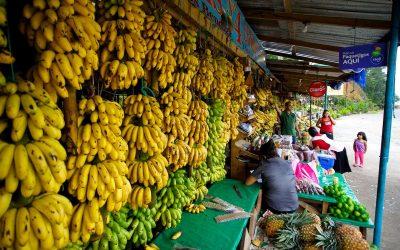 San Pedro Sula Street Markets